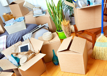 Giffen Furniture Removals Keeping Your Essentials Accessible